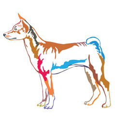 colorful decorative standing portrait of basenji vector image vector image