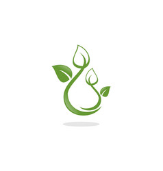 water leaf logo vector image