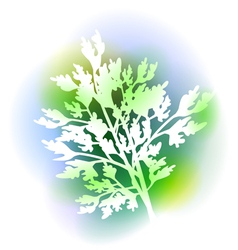 With Parsley Leaves vector image