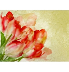 Old paper background with beautiful tulips eps 10 vector