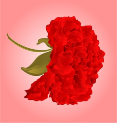 Red hibiscus blossom simple tropics flower vector