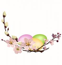 Easter eggs with blossom vector image