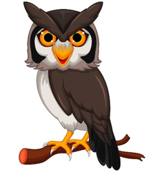 Cute owl cartoon posing vector image vector image
