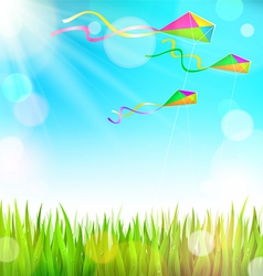 Summer sunny landscape with green grass and vector