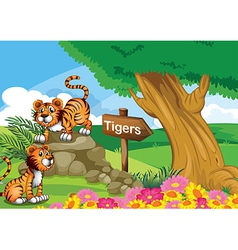 Two tigers near the signboard vector image