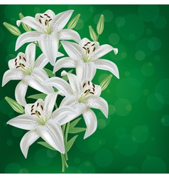 Greeting or invitation card with bouquet lily vector