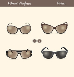 Ladies sunglasses vector
