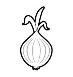 Garlic food silhouette vector