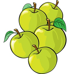 green apples isolated vector image