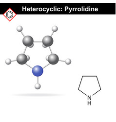 Pyrrolidine chemical structure and 3d model vector