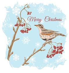 Merry xmas with bird vector
