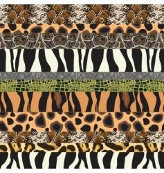 safari pattern background vector image
