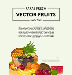 Fresh organic fruit poster vector