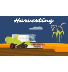 Modern combine harvester working a rice field vector
