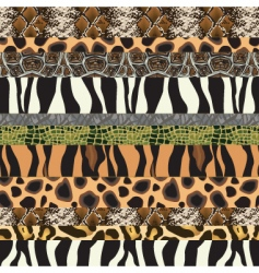 safari pattern background vector image vector image