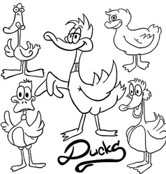 black and white ducks vector image vector image