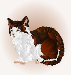 Kitty three color sitting pussy feline vector