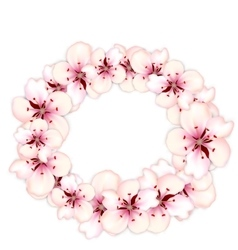 Round frame template blooming sakura pink flowers vector