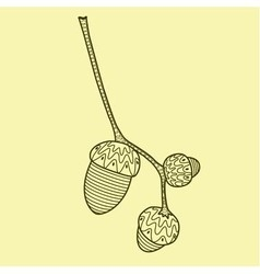 Oak twig with three acorns on yellow background vector