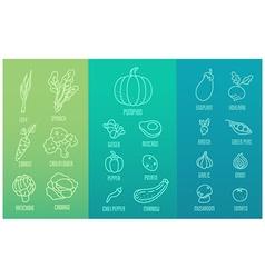 Veggie icon set vector