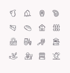 Set flat icons of linear natural products vector