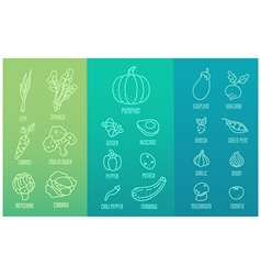 Veggie icon set vector