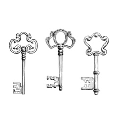 Old antique keys in sketch style vector