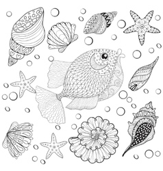 Hand drawn zentangle fish with sea shells for vector