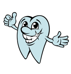 Happy cartoon tooth in clean condition vector image