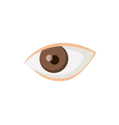 White background with male eye vector