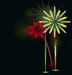 Beautiful Fireworks on black background vector image