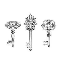 Old vintage key skeletons set vector