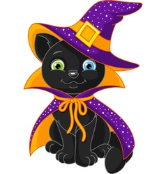 Cat witch vector