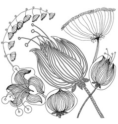 Set of floral graphic design elements for coloring vector