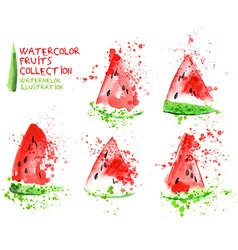 Watermelon watercolor vector