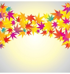 autumn background maple vector image vector image