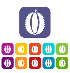 Durian icons set vector