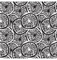 lemon slices background vector image vector image