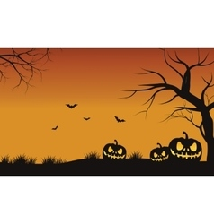 Silhouette of tree pumpkins vector