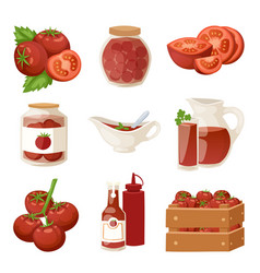 fresh tomatoes with paste isolated on white vector image vector image