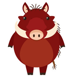 Warthog with happy face vector