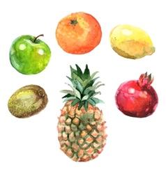 Watercolor Fruits Set vector image