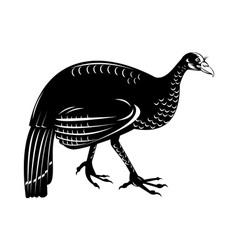 Wild turkey retro style vector