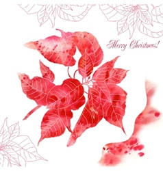 Background with red poinsettia flowers vector