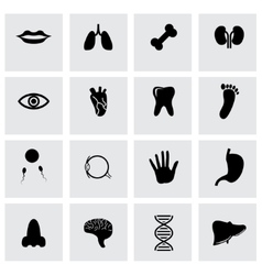 Black anatomy icon set vector
