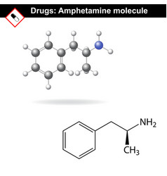 Amphetamine drug vector