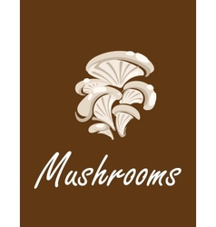 Bunch of oyster mushrooms with text mushrooms vector