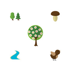 Flat icon ecology set of forest tree tributary vector