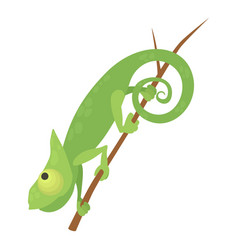 Walking chameleon icon cartoon style vector