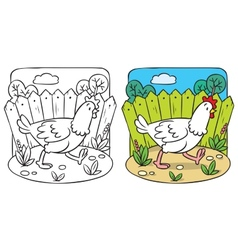 Funny chicken coloring book vector